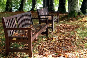 Mesa y banco de jardín de madera
